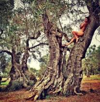 """Naike Rivelli posa nuda """"alberi incantati"""" del Salento"""